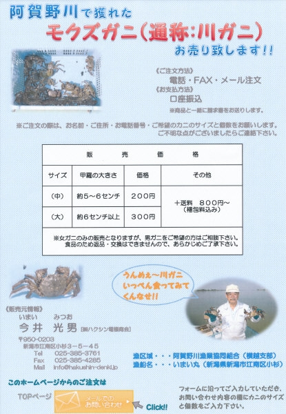 チラシ.JPGのサムネール画像